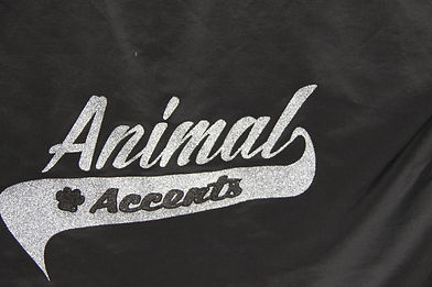 2019 Shop Animan Accents1 HOME.JPG