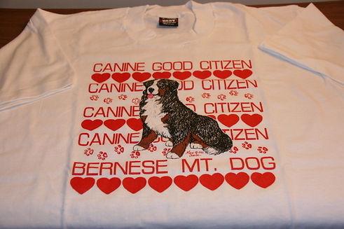 T2 - 27 - CGC shirt.JPG
