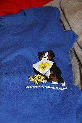 BMDCA 2020 logo wear
