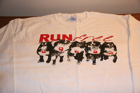T2 - 28 - Run Free shirt.JPG