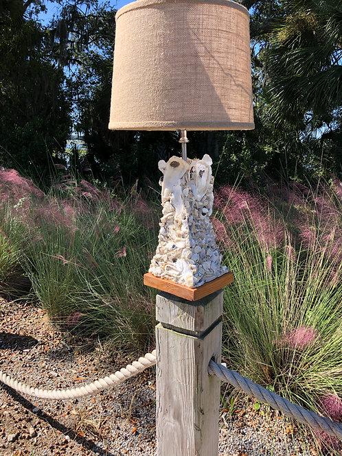 The Old World Tabby Lamp