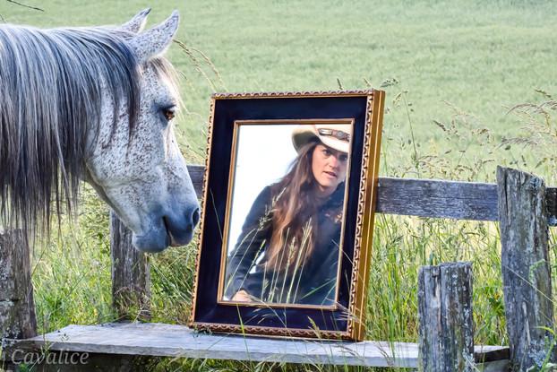 Miroir et cheval