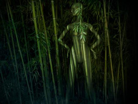 Bonaveri Unveils The World's First Biodegradable Mannequin