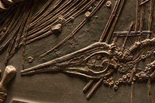 Closeup--Ichthyosaur with Babies in Utero