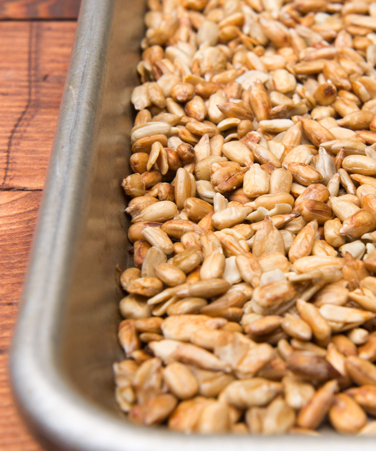 learn how to make sunflower seed butter (aka Sunbutter) in the Vitamix. Inexpensive, easy and SO delicious!