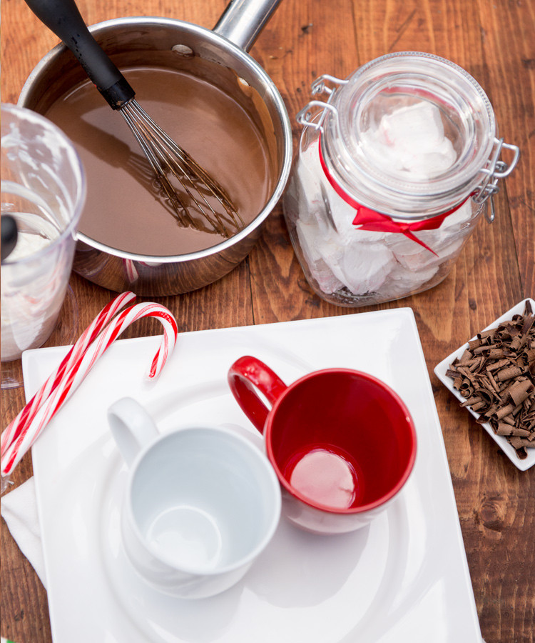Rich, creamy and decadent, this sugar free (with dairy free option) hot chocolate is sure to please. www.healthnutnation.com