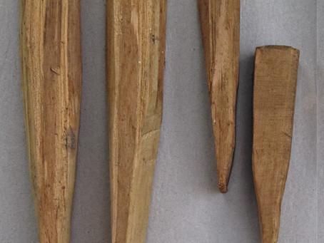 Bogenholz Ernten und Verarbeiten – 1