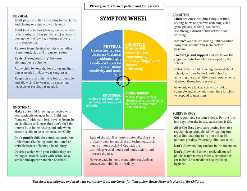 Concussion Symptom Wheel