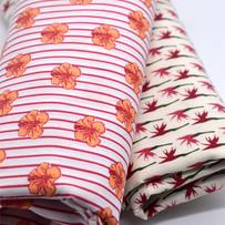Striped Hibiscus, Bird of Paradise