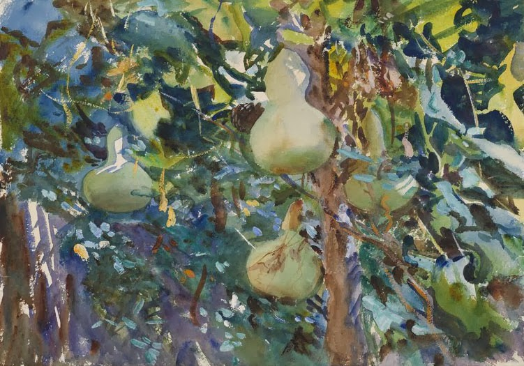 1908 Gourds (Majorca) graphite and watercolour on wove paper 35.1 x 50 cm Brookl