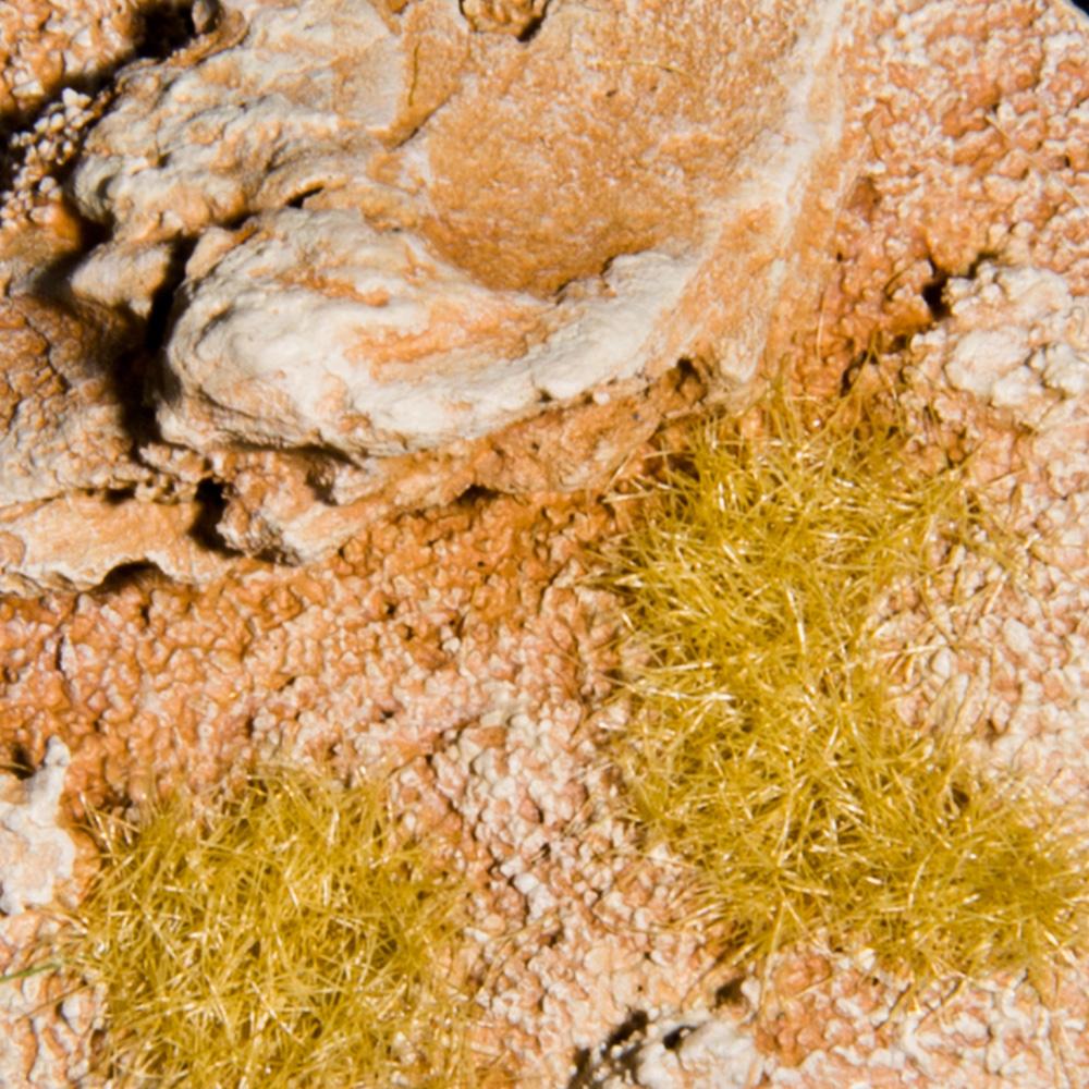 DESERT - LEVEL 3
