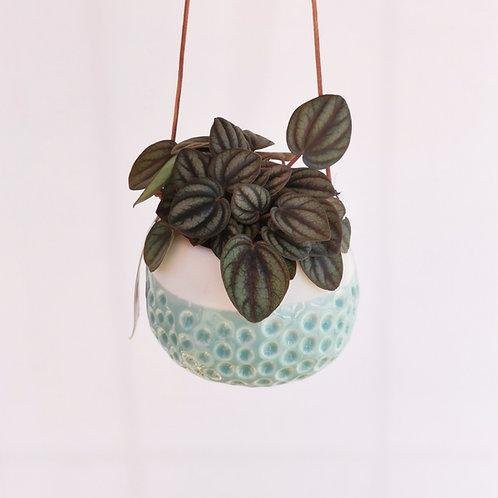 Hanging Semi Glazed Dimple Ceramic Planter
