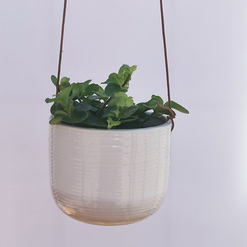 Hanging White Latte Ripple Ceramic Planter