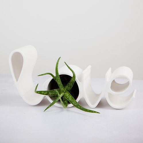 "Fine Ceramic ""Love"" Planter with Aloe Succulent"