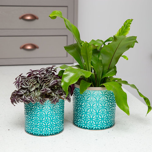 Planter no 127 (Turquoise Moroccan)