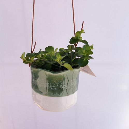 Hanging Glazed Half Dip Green Ceramic Planter