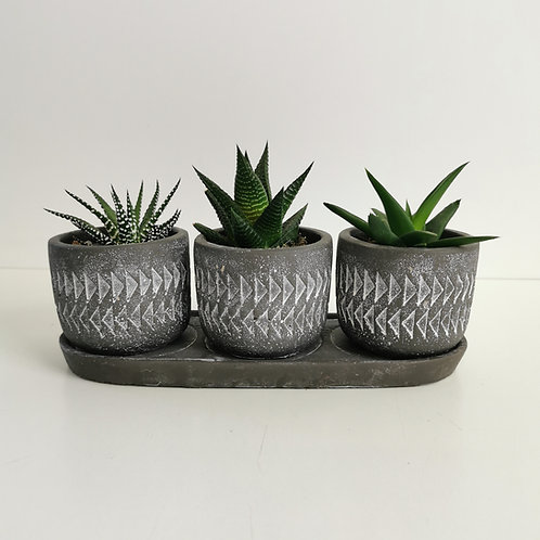Aztec Stone Planter Set