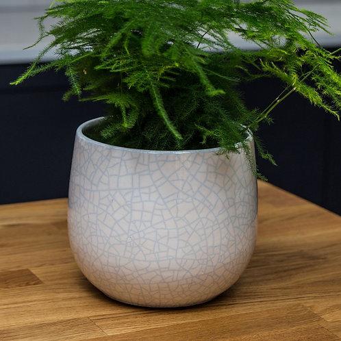 White Crackle Glaze Ceramic Plante