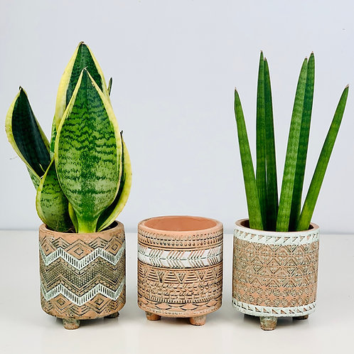 Etched Terracotta Footed Planter