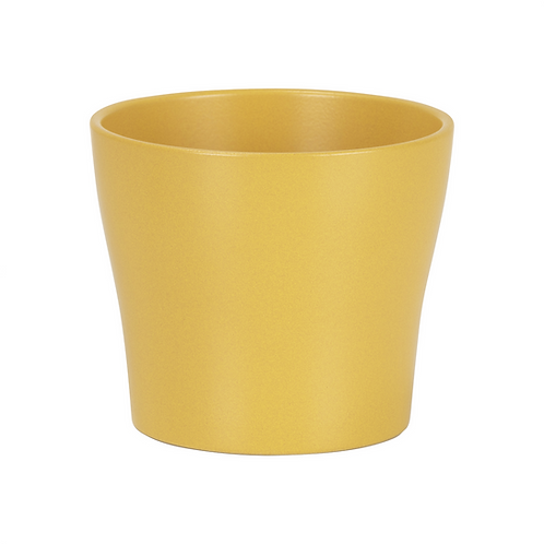 Mustard Yellow Ceramic Planter