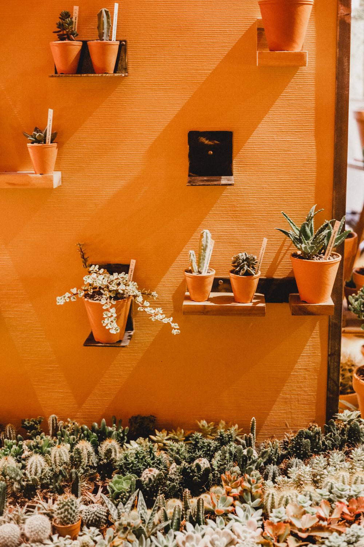 Paris Plant Shop