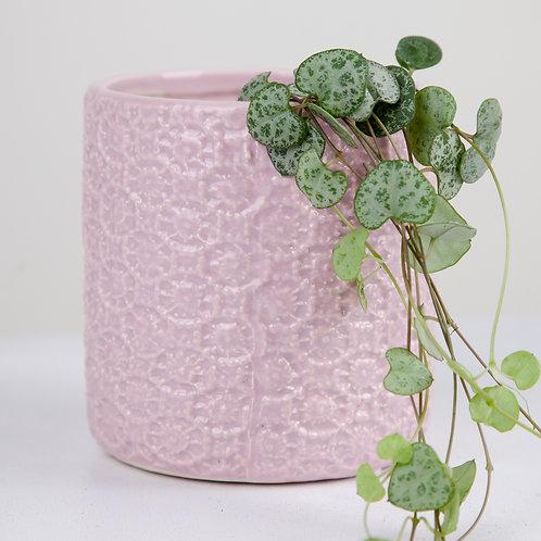 Planter no 146 (patterned pink ceramic)