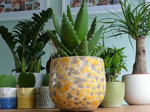 Fat lava style ceramic planter