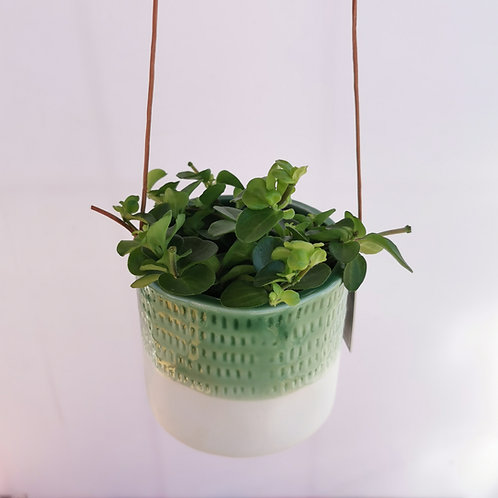 Hanging Green and White Semi-Glazed Planter