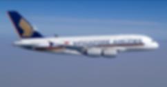 SIA plane.PNG