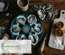 WINETOPIA Oysters