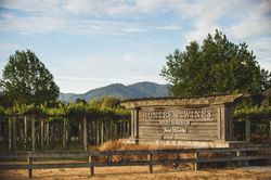 Hunter's Wines