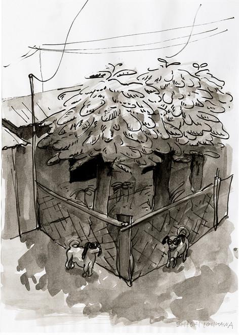 知らぬ日、知らぬ土地、知らぬ犬 No.1 / Unknown day, Unknown place, Unknown dogs No.1