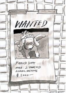 詐欺師の犬 / Fraud dog