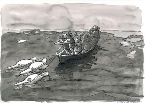 氷が溶けた海で犬ぞりを助けたイルカの群れ / The dolphins that helped sled dogs and a musher on the ocean where sea ice was gone