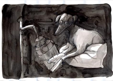 手のモデルの犬 / Hand model dog who goes to beauty salon