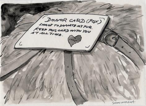 毛皮ドナーカードを持ち歩くやさしい狐 / A kind fox carrying a fur donor card