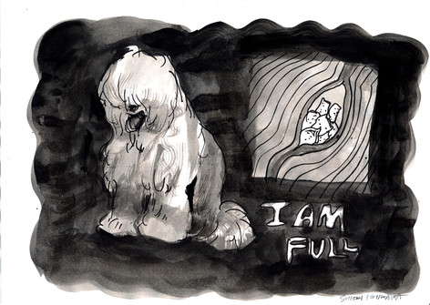 知らぬ間に薬物を密輸しているふわふわ犬 / A fluffy dog who is smuggling drugs unconsciously