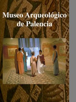 Museo de Palencia