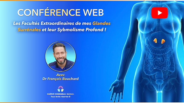 WEB CONFERENCE : MES GLANDES SURRÉNALES | MY ADRENALS