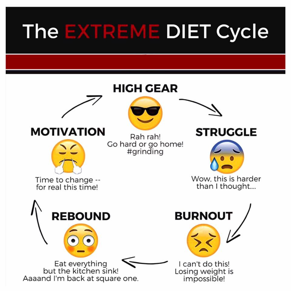 Picture 1 - Diet Cycle