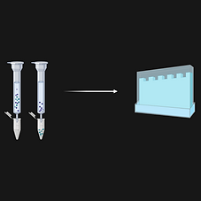 Protein Sample Preparation.png
