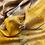 Thumbnail: Vichy – Yellow & Blue
