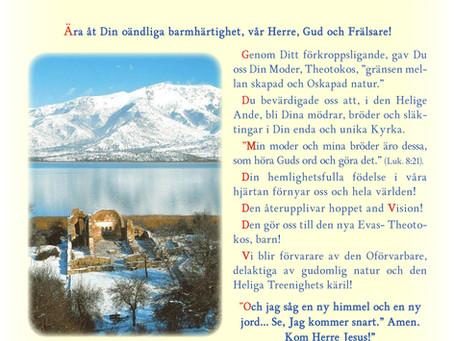 Meddelande från Metropolit Kyprianos på Kristi födelse