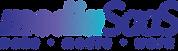 logo - mediaSaaS.png