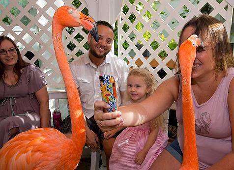 Kids Key West Butterfly Museum.jpg