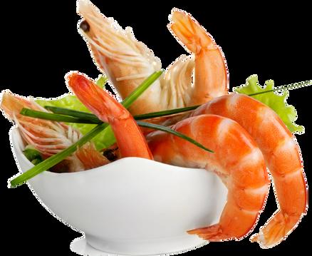 Delicous Fresh Sun Shrimp
