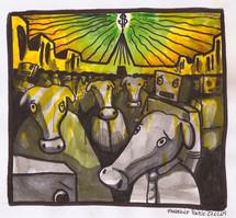 vida de gado.jpg
