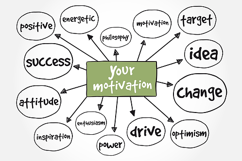 Motivational Map & 30-minute coaching session linked to your results