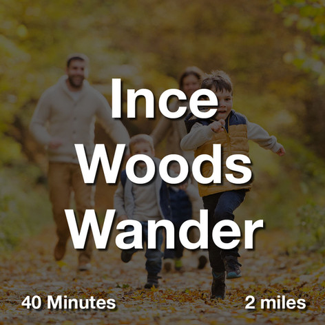 Ince Woods Wander