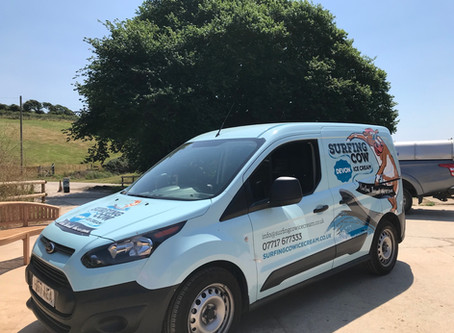 Surfing Cow does delivery!